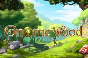 Gnome Wood by Microgaming