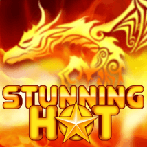 Stunning Hot Logo
