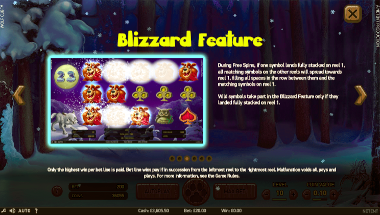 Wolf Cub Blizzard Feature